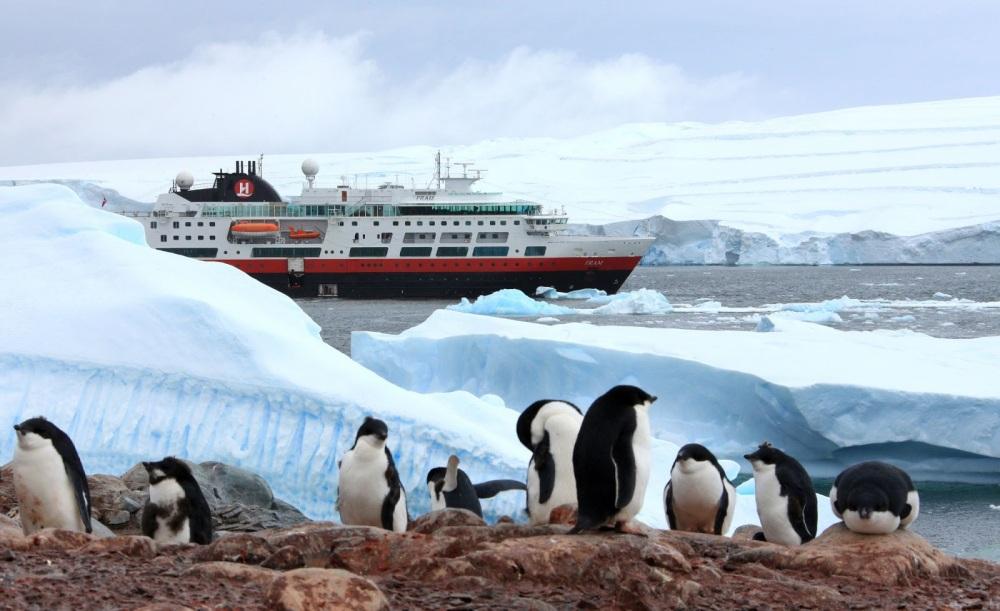 Fram-penguins