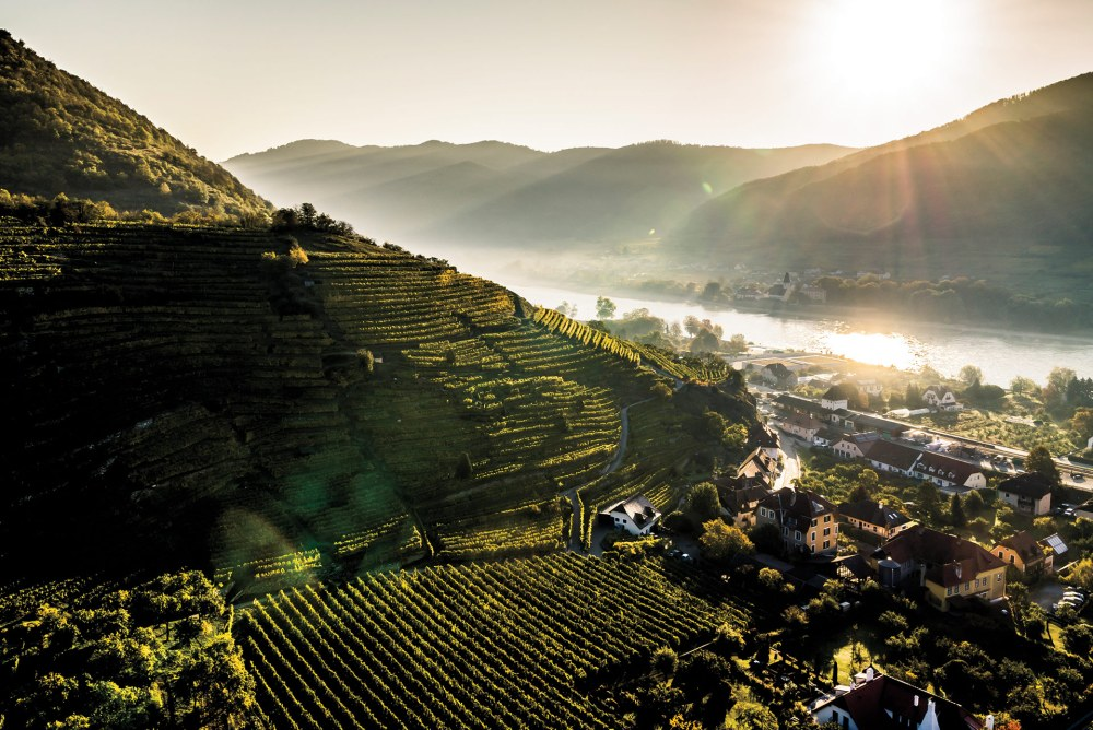 Wachau_Single_Vineyards_Austria_Singerriedel_Credit_Robert_Herbst_Vinea_Wachau_1920x1280